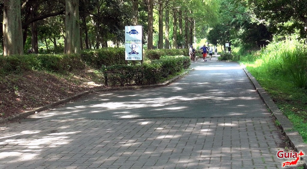 Lago Sanaru Parque de Hamamatsu 25