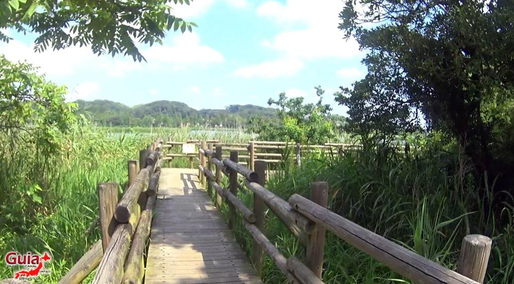 Lago Sanaru Parque de Hamamatsu 29