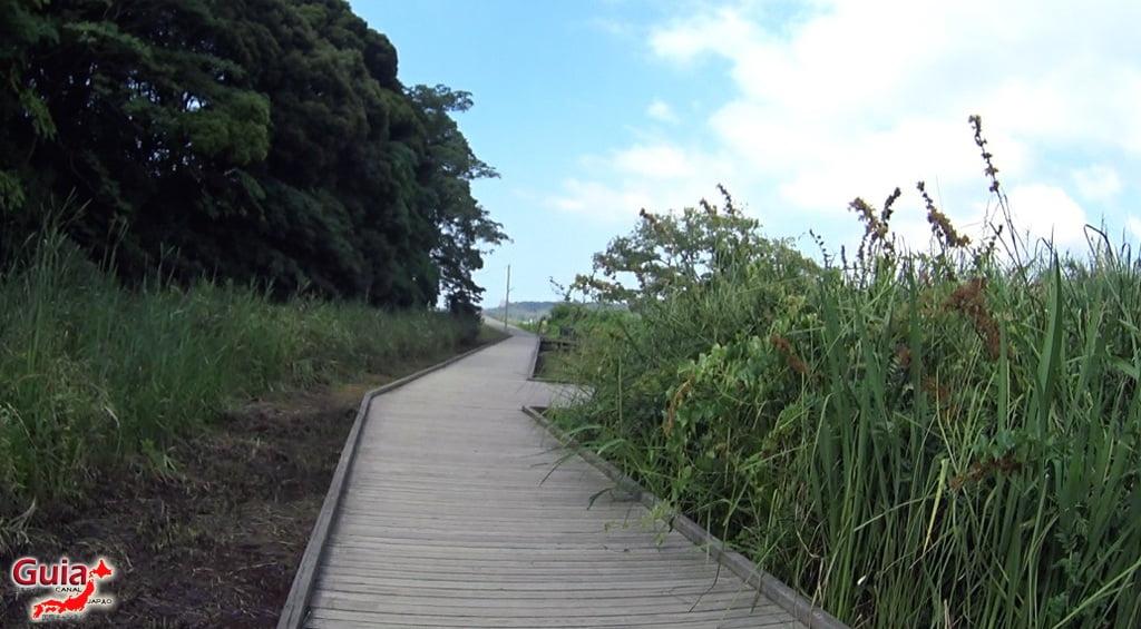 Lago Sanaru Parque de Hamamatsu 30