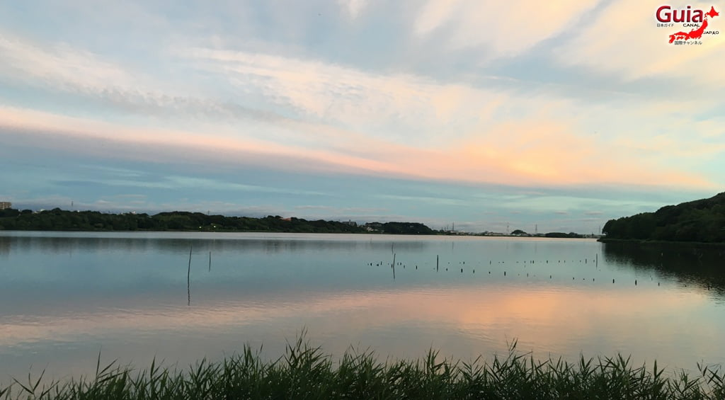 Санару озеро Хамамацу Парк 35