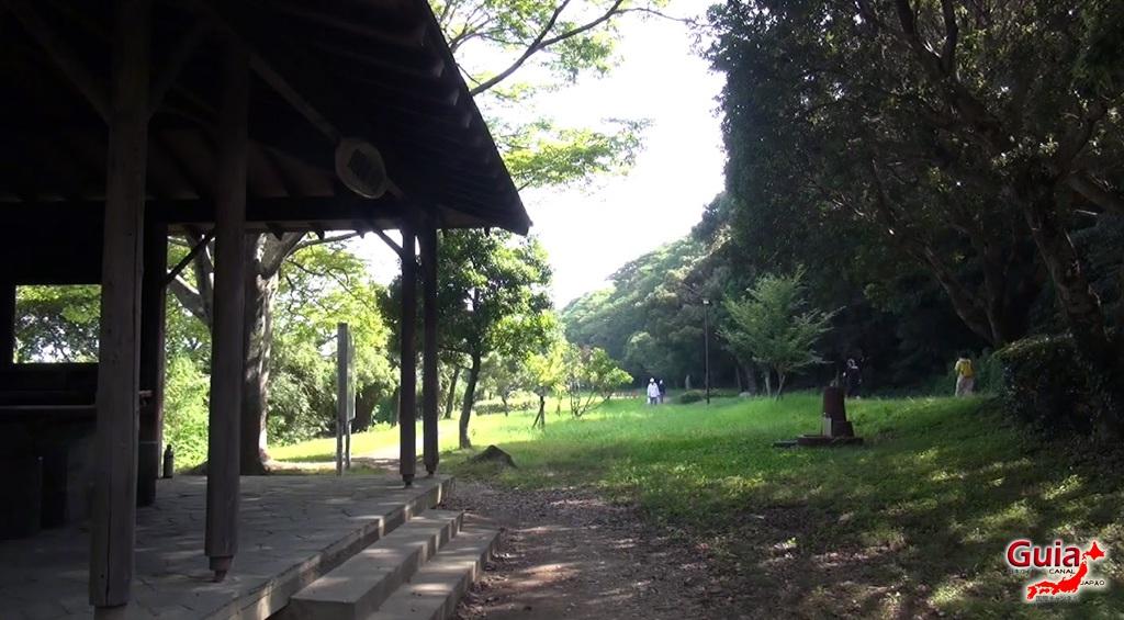 Санару озеро Хамамацу Парк 4