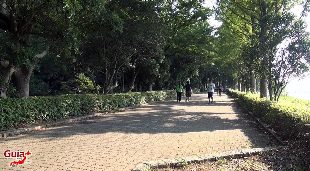 Санару озеро Хамамацу Парк 5