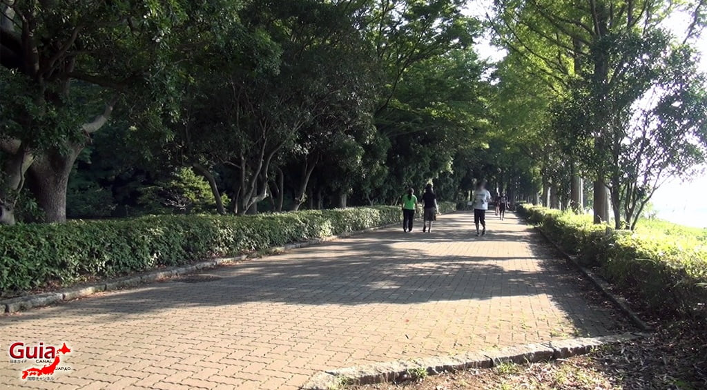 Sanaru Lake Hamamatsu Park 5
