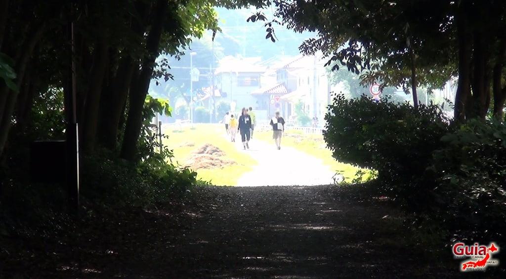 Санару озеро Хамамацу Парк 6