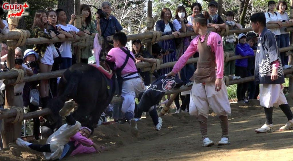 Festival Omanto Takahama (2020 annulé) 88