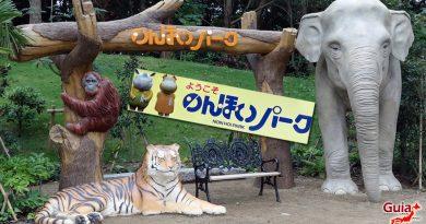 Nonhoi Park – Photo Gallery
