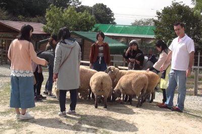 아이치 보쿠 조-미요시 2의 작은 농장