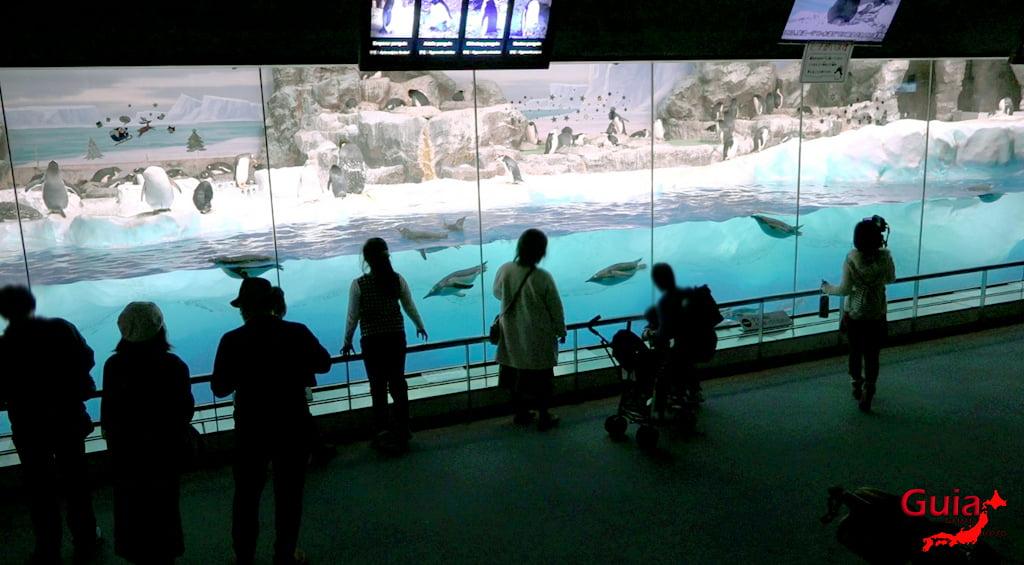 名古屋31水族馆