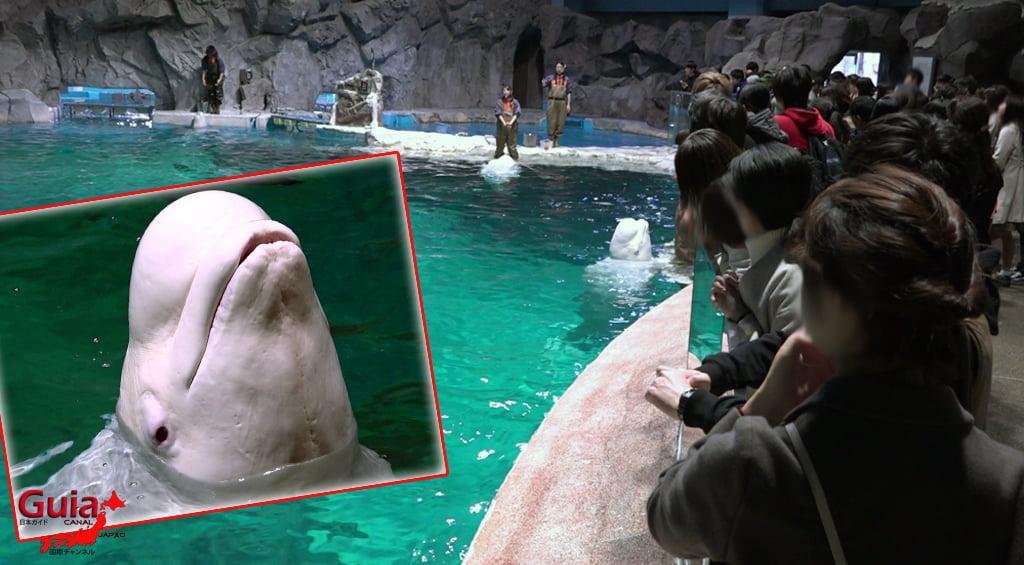 名古屋35水族馆
