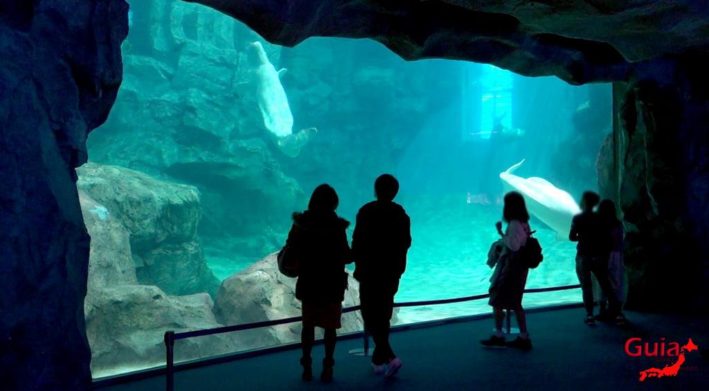 名古屋4水族馆