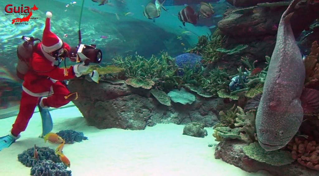 名古屋9水族馆