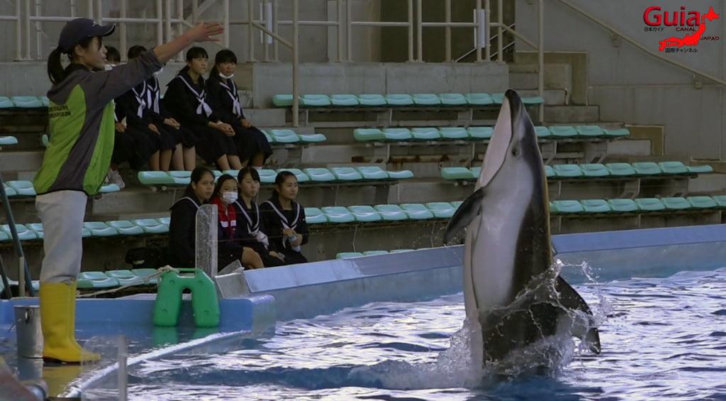 名古屋49水族馆