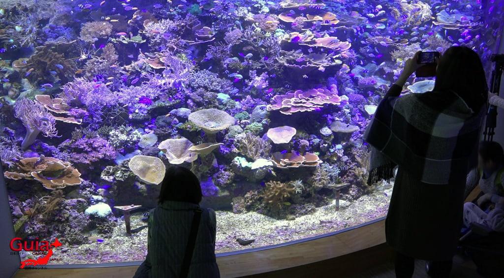 名古屋19水族馆