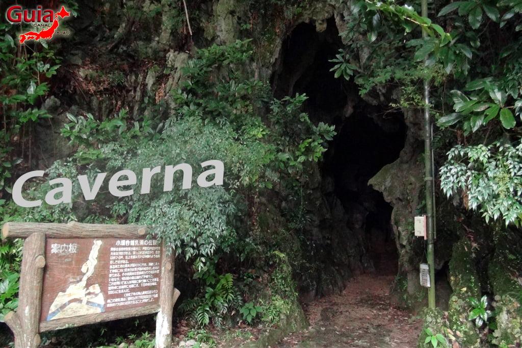 Caverna Aoya Shyonyudo Hamamatsu 1