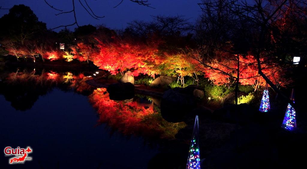 Nabana no Sato - Parque de flores 62