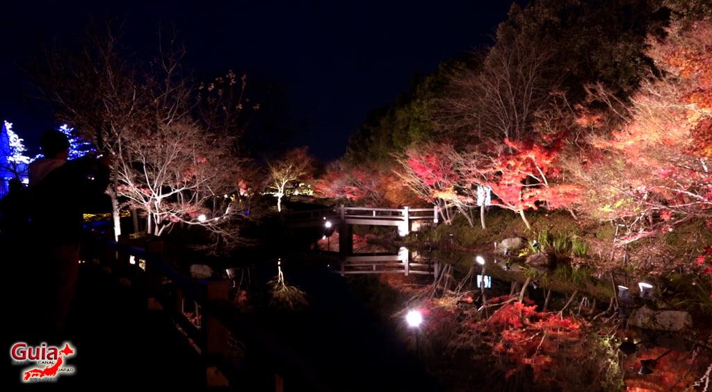 Nabana no Sato - Parque de flores 57