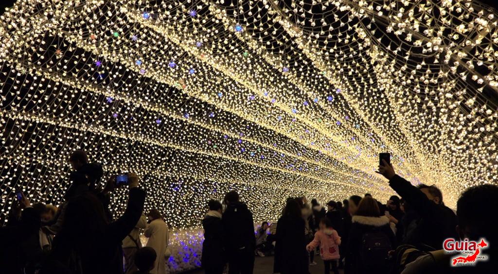 Nabana no Sato - Flower Park 67