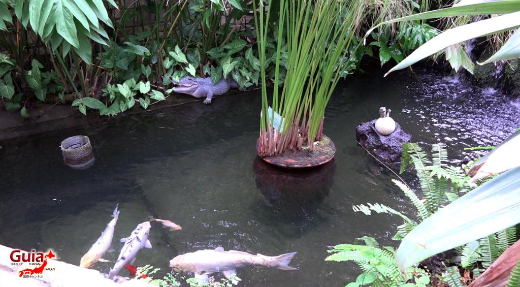 豊橋77動物園と一般植物園
