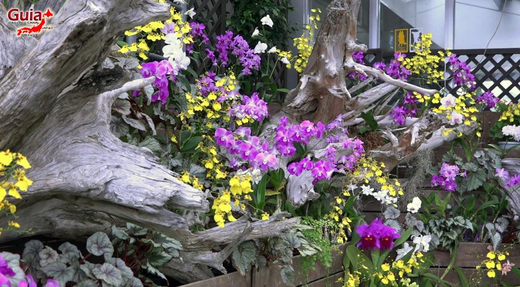 豊橋79動物園と一般植物園