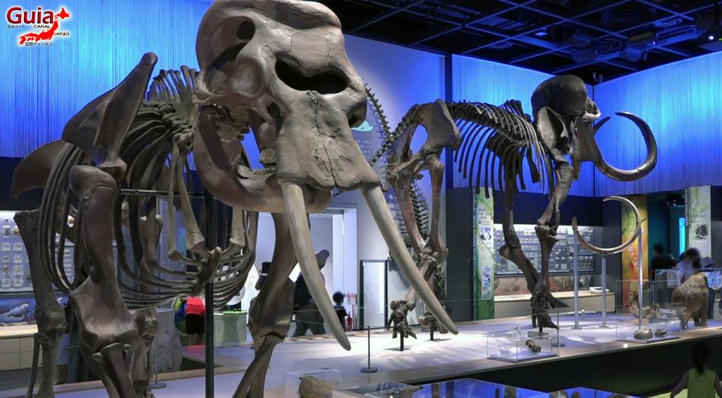 豊橋74動物園と一般植物園
