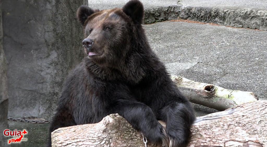 豊橋34動物園と一般植物園