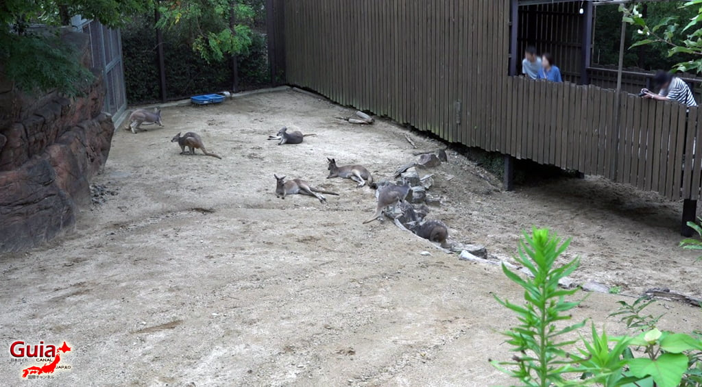 豊橋37動物園と一般植物園
