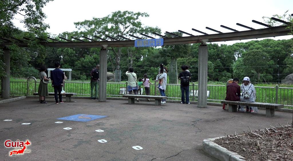 टोयोहाशी सामान्य चिड़ियाघर र बोटानिकल गार्डन १
