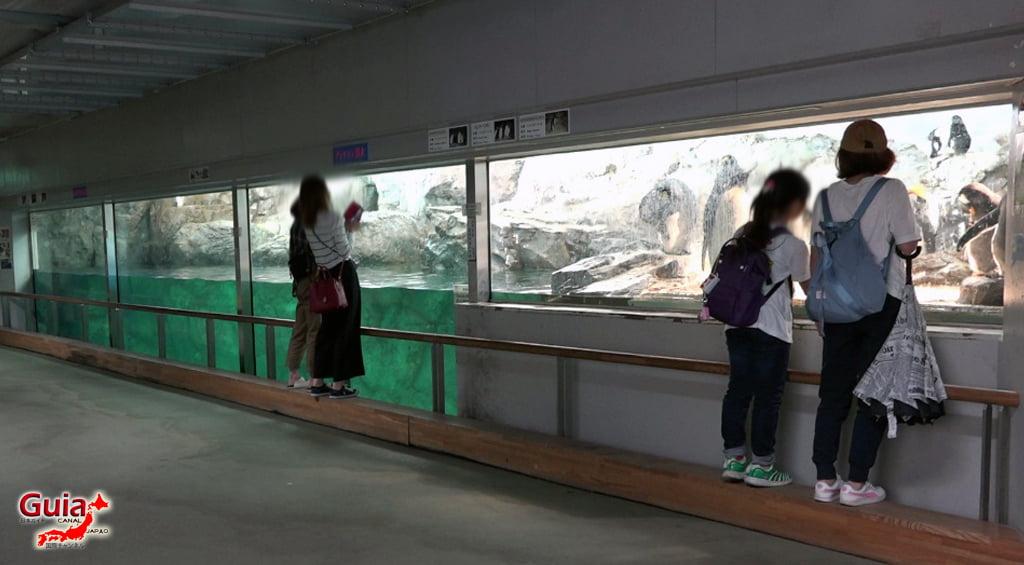 Toyohashi 50 Zoo and General Botanical Garden