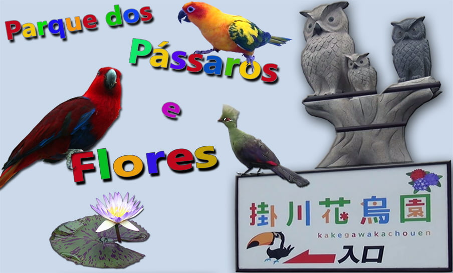 Parque dos pássaros e flores - Kakegawa Kachouen (掛 川 花鳥 園) 1