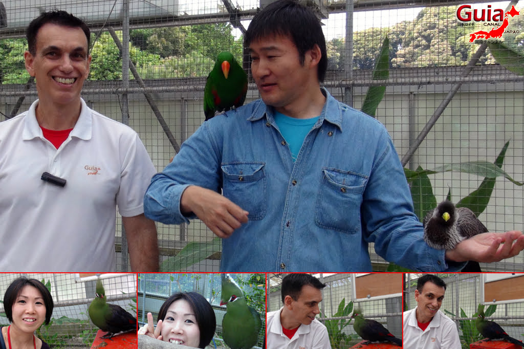 Parque dos pássaros e flores - Kakegawa Kachouen (掛 川 花鳥 園) 3