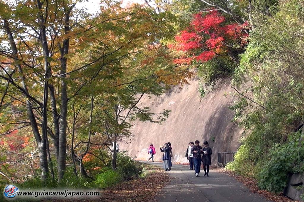 Aldeia Shirakawa-go (白川村) 4