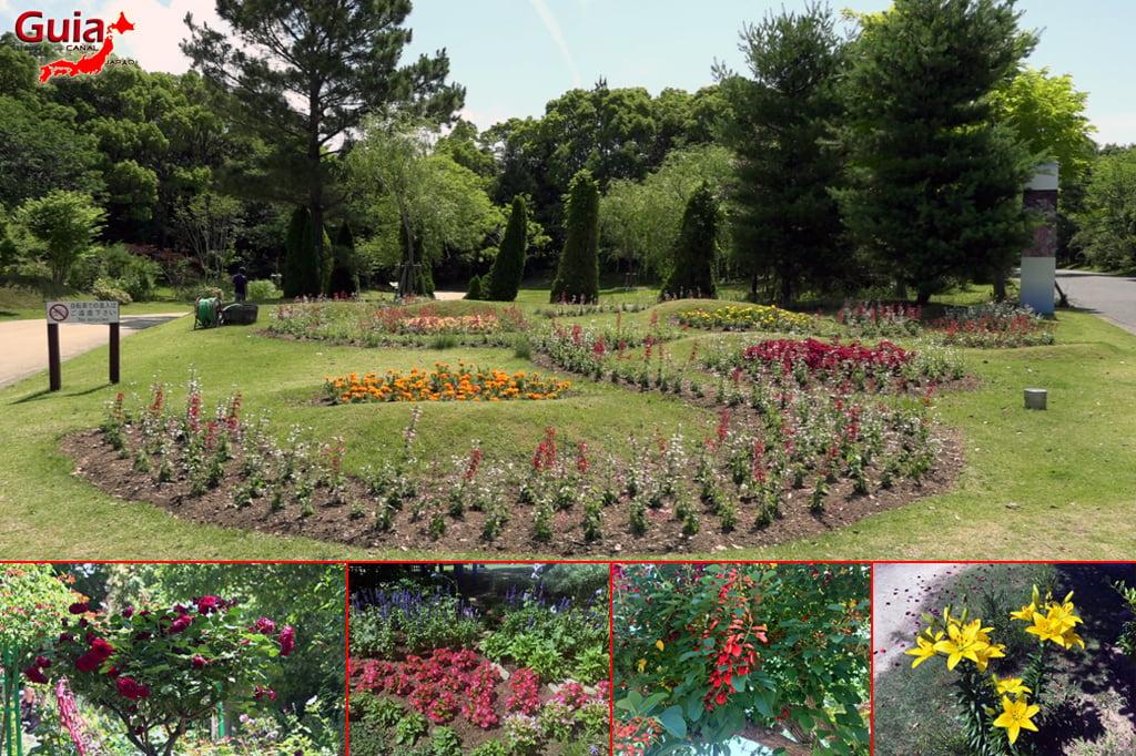 Hamanako Garden Park - Hamamatsu 9