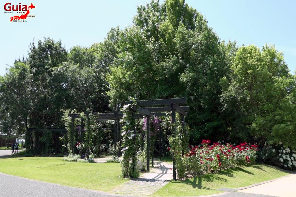 Hamanako Garden Park - Hamamatsu 10