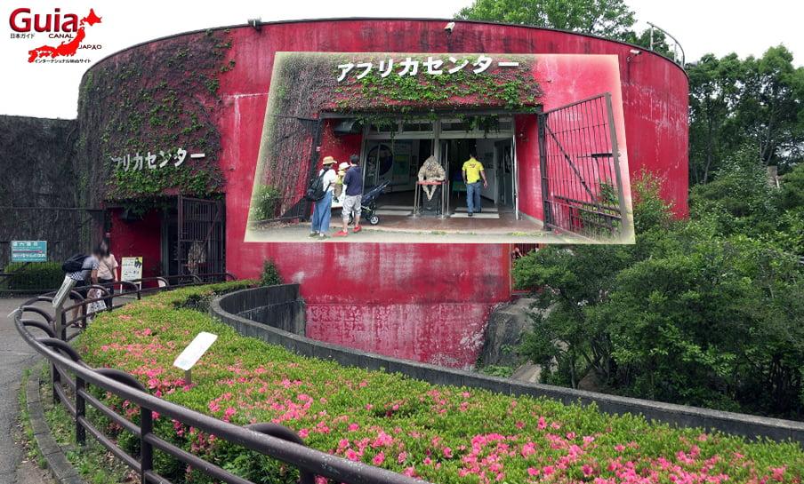 Парк японских обезьян - Парк обезьян 22