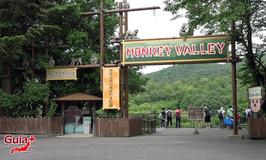 Парк японских обезьян - Парк обезьян 37