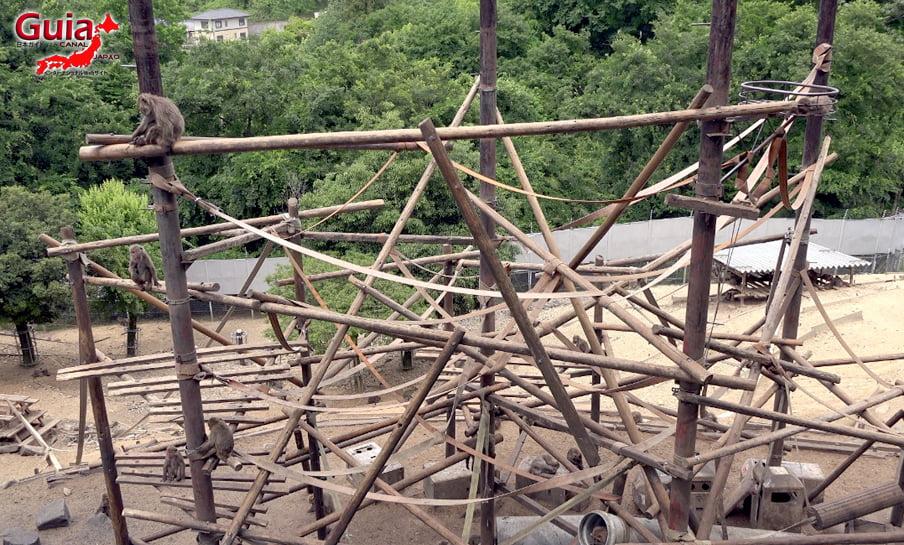 Парк японских обезьян - Парк обезьян 40