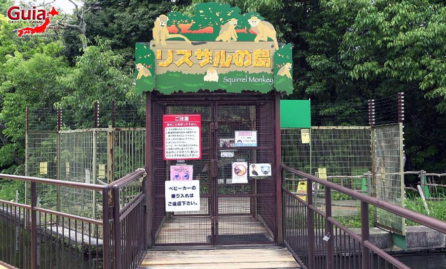 Парк японских обезьян - Парк обезьян 42