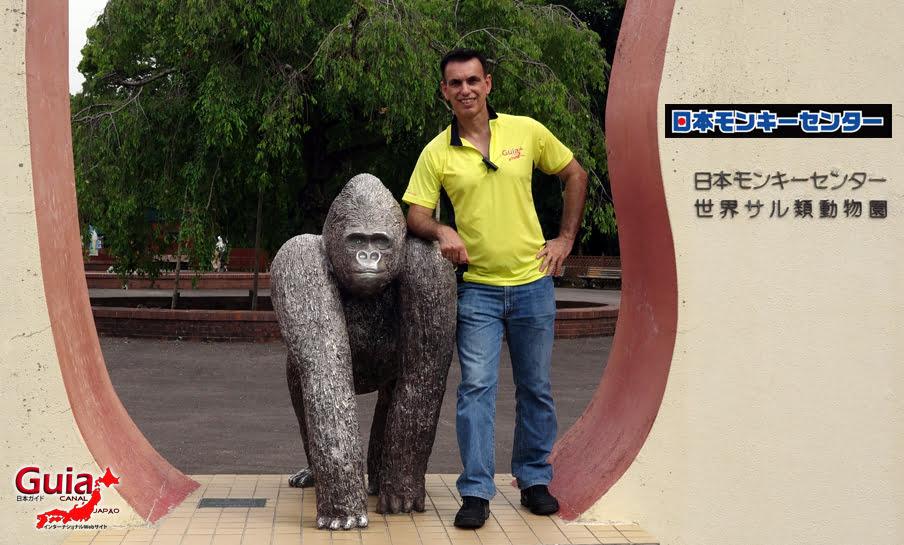 Парк японских обезьян - Парк обезьян 49