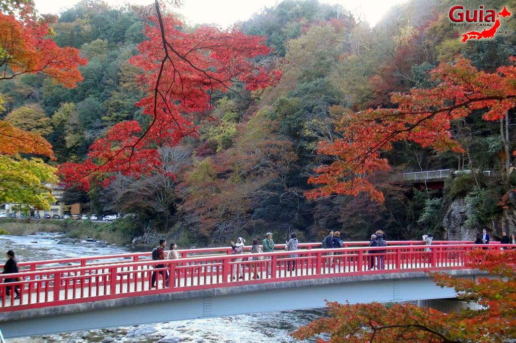 Park Korankei (香 嵐 渓) Toyota 11 Musim Gugur Daun