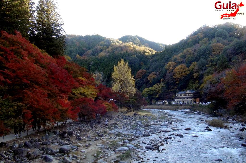 Park Korankei (香 嵐 渓) Toyota 13 Musim Gugur Daun