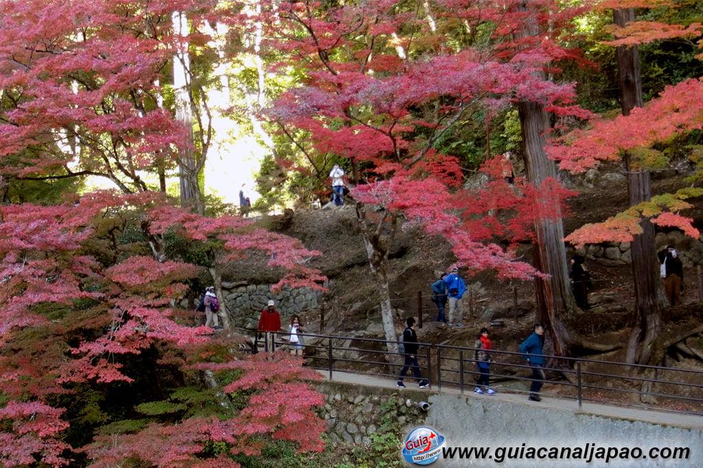 Park Korankei (香 嵐 渓) Toyota 14 Musim Gugur Daun