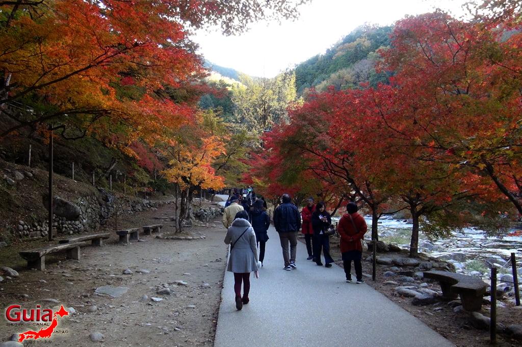 Park Korankei (香 嵐 渓) Toyota 15 Musim Gugur Daun