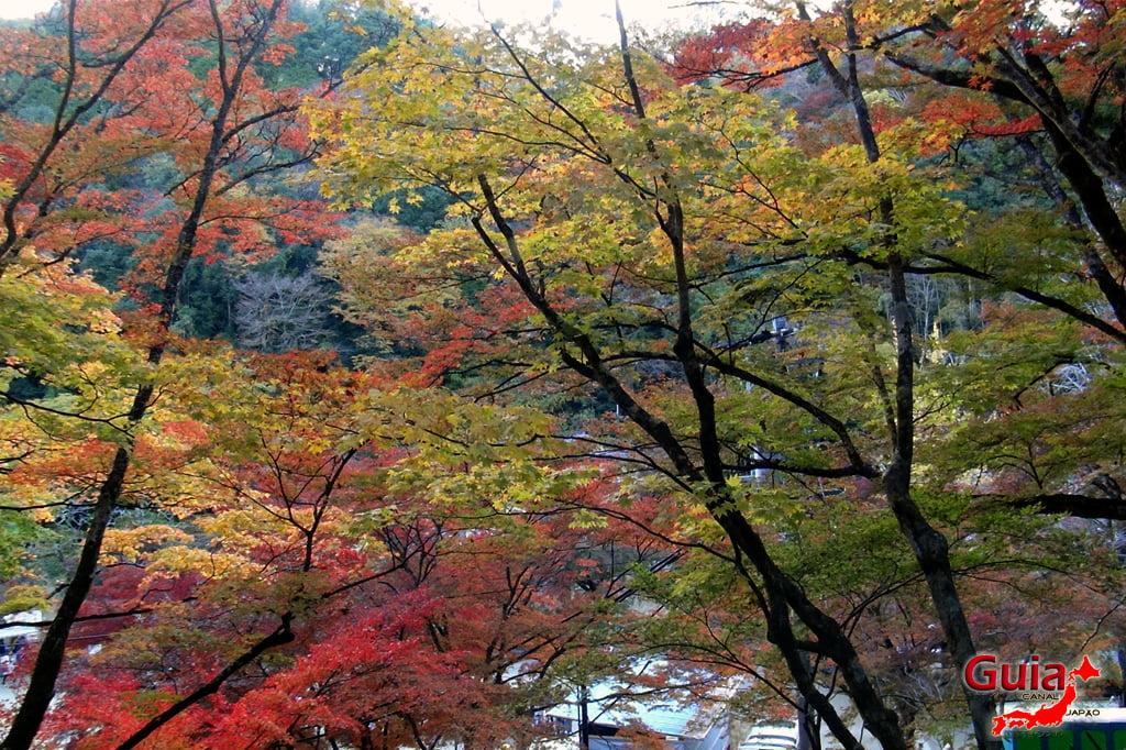 Park Korankei (香 嵐 渓) Toyota 18 Musim Gugur Daun