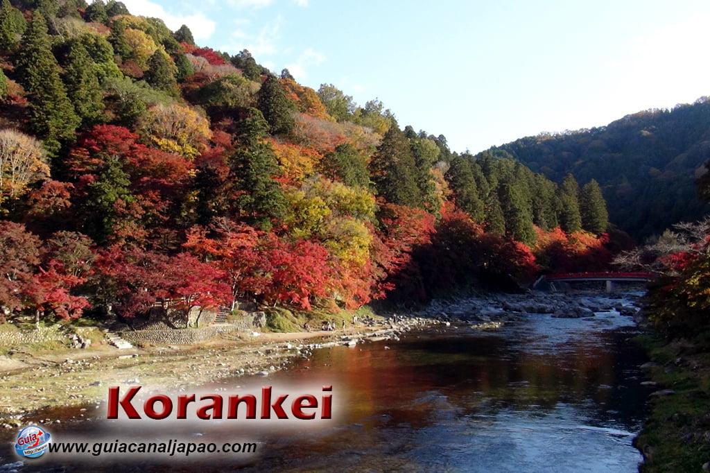 Park Korankei (香 嵐 渓) Toyota 1 Musim Gugur Daun
