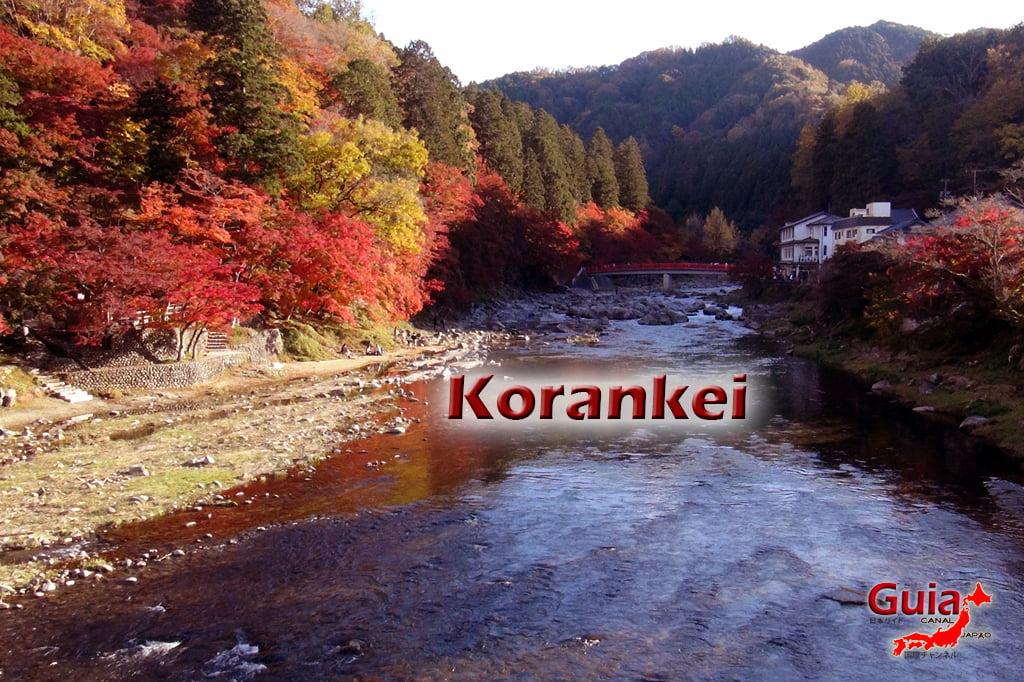 Park Korankei (香 嵐 渓) Toyota 2 Musim Gugur Daun