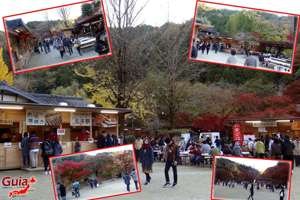 Park Korankei (香 嵐 渓) Toyota 21 Musim Gugur Daun