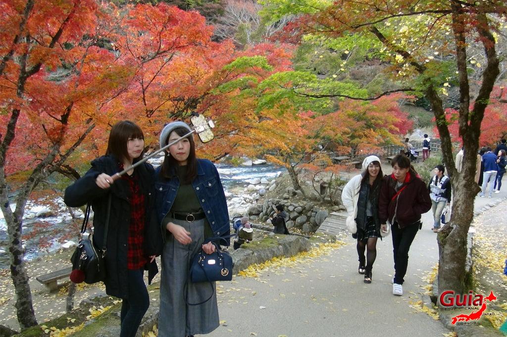 Park Korankei (香 嵐 渓) Toyota 22 Musim Gugur Daun