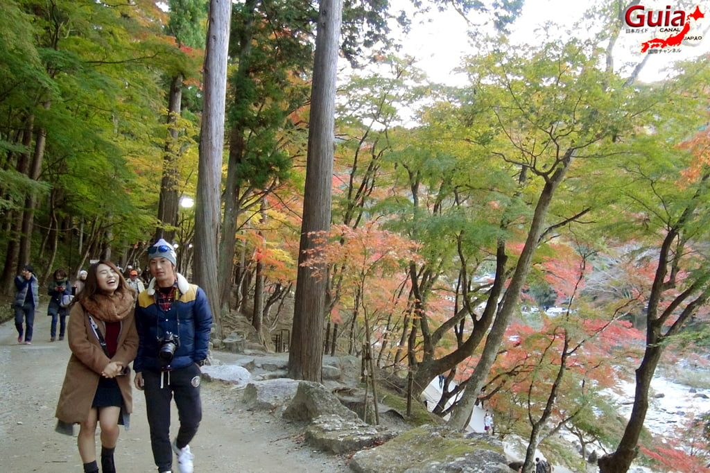 Park Korankei (香 嵐 渓) Toyota 23 Musim Gugur Daun