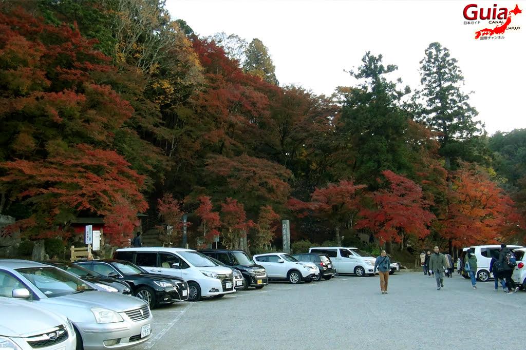 Park Korankei (香 嵐 渓) Toyota 24 Musim Gugur Daun