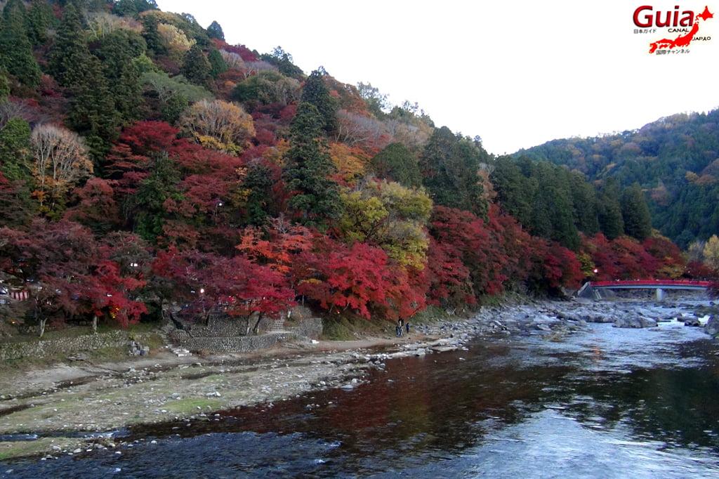 Park Korankei (香 嵐 渓) Toyota 25 Musim Gugur Daun